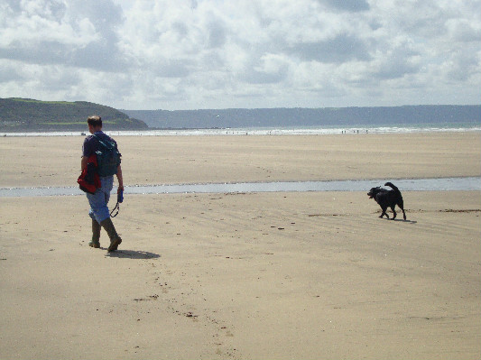 dog walking on a beach at Lower Hearson Farm Self Catering Holiday Cottages North Devon