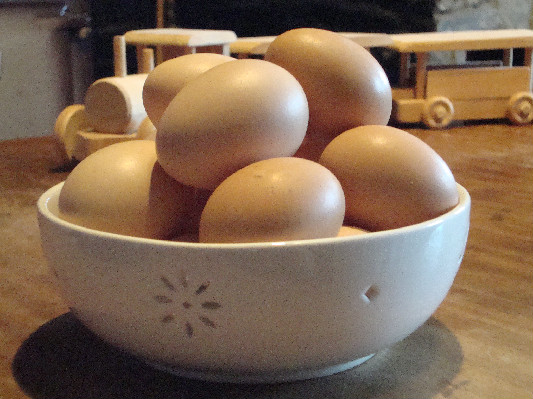eggs at Lower Hearson Farm Self Catering Holiday Cottages North Devon